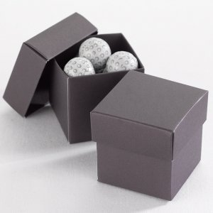 Mix and Match Two Piece Raisin Favor Boxes (Set of 25) image