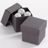 Mix and Match Two Piece Raisin Favor Boxes (Set of 25)