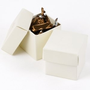 Mix and Match Two Piece Ivory Favor Boxes (Set of 25) image