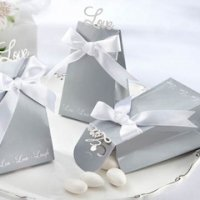 'Express Your Love' Silver Favor Boxes (Set of 24)