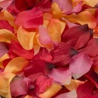 Rose Flower Petals for Flower Girls (6 Colors)