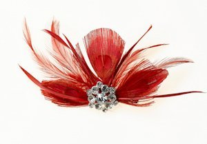 Red Feather Accessory Clip image