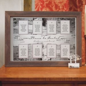 Birch Bark Design Seating Chart Kit image