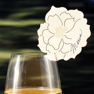Laser Expressions Peony Die Cut Card - Set of 6 (6 Colors) image