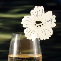 Laser Expressions Pansy Die Cut Card - Set of 6 (6 Colors)
