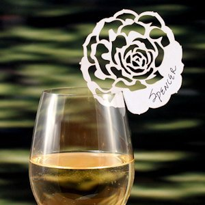 Laser Expressions Succulent Die Cut Card (Set of 12) image