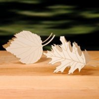 Laser Expressions Leaf Folded Place Card - Set of 4