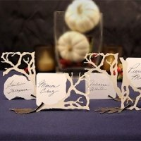 Laser Expressions Branch Die-Cut Cards (Set of 8)