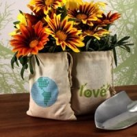 Organic Cotton ECO Mini Drawstring Bag Sets - 2 Designs