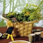 Decorative Picnic Basket - Large