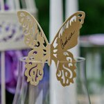 Laser Expressions Shimmer Butterfly Die Cut Card (4 Colors)
