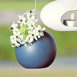 Micro Hanging Circle Vessel (Set of 4) - Many Colors