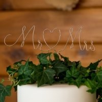 Mr. & Mrs. Twisted Wire Cake Topper